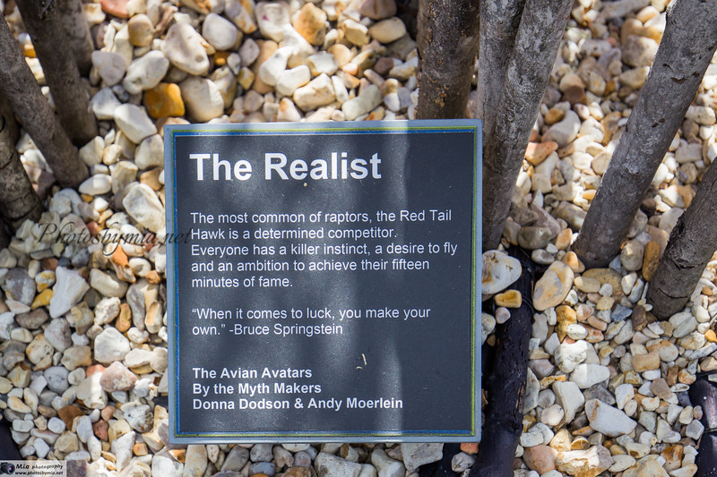 AA5_Realist Description