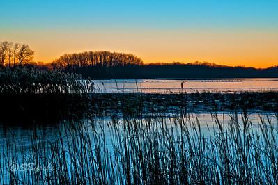 Marsh scene, Bombay Hook, Delaware