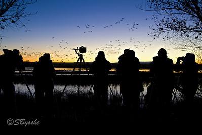 Sunrise Photogs