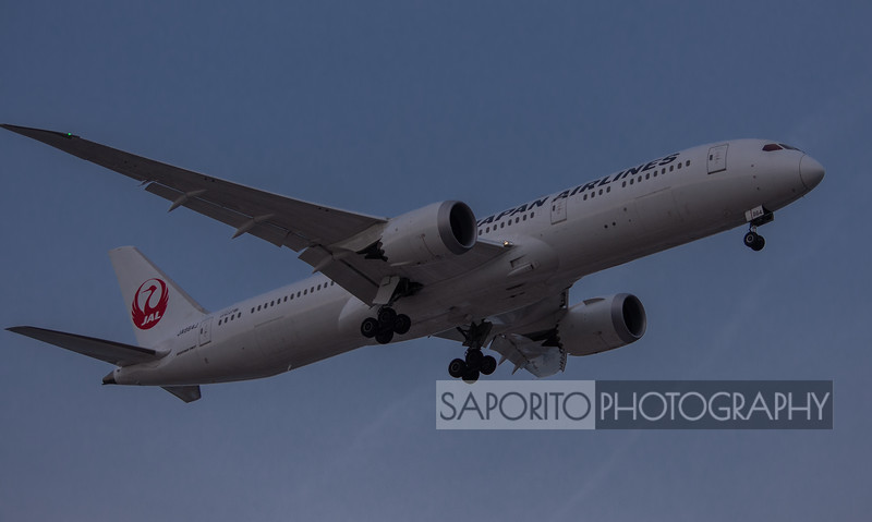 Japan Airlines 787-9