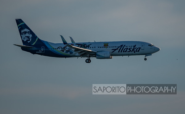 Alaska 737-800