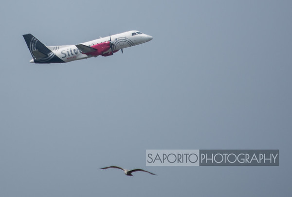 Silver Airways Saab 340