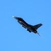USAF General Dynamics F-16C Fighting Falcon 91-0398 / SW (cn CC-96)