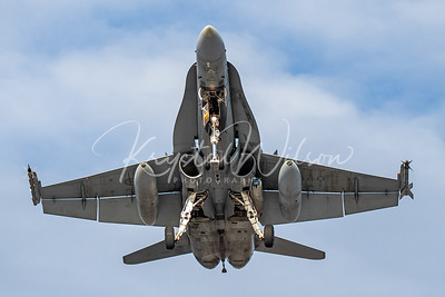 RCAF CF-18 Hornet Assigned To 410 'Cougars' Sqn At CFB Cold Lake 2019