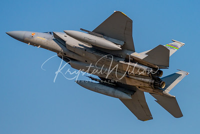 Louisiana ANG F-15 Eagle Assigned To 159th FW At Airshow London 2017