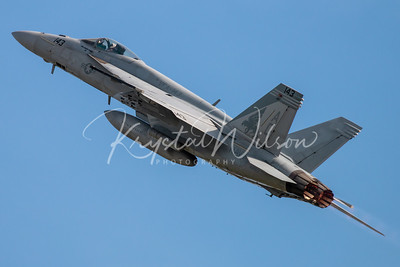 USN F/A-18E Super Hornet Assigned To VFA-143 'Pukin' Dogs' At Airshow London Arrivals 2018