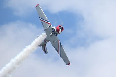 GEICO Skytypers (Sandy Tambone www.sandytambone.com)