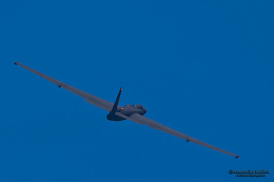 SANTA ROSA, CA - AUGUST 20: U-2S Dragon Lady Spyplane flyby 2011 Wings Over Wine Country Air Show on August 20, 2011 in Santa Rosa, CA.