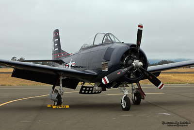 SANTA ROSA, CA - AUG 21: North American T-28 Trojan aircraft on display during the Wings Over Wine Country Air Show, on August 21, 2011, Charles M. Schulz - Sonoma County Airport, Santa Rosa, CA.
