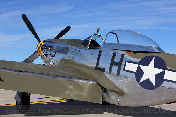 """Warbird Heritage Foundation's beautifully restored P-51 Mustang,  known as """"Baby Duck' waiting for her chance to fly."""