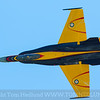 CF-18 demo bird
