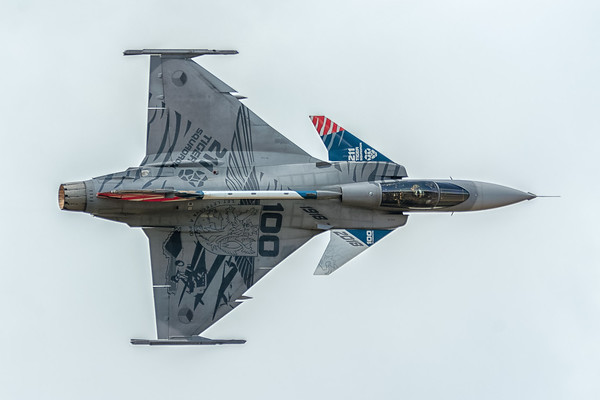 Saab Gripen, Czech Air Force