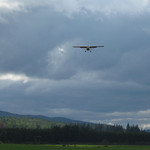 Our Auster landing after a local flight  from Aboyne