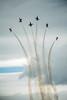 """Le F-5 Freedom Fighter est un avion de chasse, conçu et fabriqué par Northrop aux États-Unis à partir de l'année 1962. Fiable, performant et bon marché, il a rencontré un grand succès à l'export puisqu'il a été adopté par une trentaine de pays et construit à plus de 2 700 exemplaires (dont 1 800 par Northrop et 900 autres sous licence).Source Wikipedia : <a href=""""http://fr.wikipedia.org/wiki/Northrop_F-5_Freedom_Fighter"""">http://fr.wikipedia.org/wiki/Northrop_F-5_Freedom_Fighter</a>"""