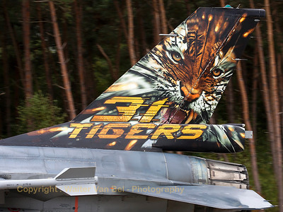 Tail close-up of the 2013-Tiger from 31Sqn at KB.
