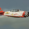 AT-6 Aeroshell Demonstration Team at EAA AirVenture 2008 in Oshkosh, Wisconsin.  http://jonberryphoto.smugmug.com/gallery/5581889_iYXVt#342321869_sEWZi  Variously called the Texan (USAAF), Harvard (RAF), Yale, I-Bird, Mosquito, Wirraway (Australia), T-6 and SNJ (USN), the AT-6 appeared in 1940, a derivation of North American's NA-16 design drawn up for the 1937 Air Corp competition (which was won by the NA-16 incidentally). In all, over 17,000 aircraft were produced, not taking into account the numbers rebuilt from existing airframes, or others that used the AT-6 technology, such as the P-64 or Boomerang.  The AT-6 Texan became the classroom for the majority of the Allied pilots who flew in World War II, and trained several hundred thousand pilots in 34 different countries. It's basic design was as a trainer, with the characteristics of a high speed fighter, and was well suited to the intermediary task of training pilots before letting them loose in an actual fighter aircraft. Although not as fast as a fighter, it was easy to maintain and repair, had more maneuverability and was easier to handle. A pilot's airplane, it could roll, Immelmann, loop, spin, snap, and vertical roll. It was used to train pilots in all aspects of tactical operations, such as dog-fighting, ground strafing, carrier landings, and bombardment. It also included the capacity for fixed and flexible guns, cameras, and just about any other device that the military required.  The Texan is best known as a trainer, and is affectionately know as 'PILOT MAKER'. In the words of one airman ''The best machine ever built to turn gasoline into noise'.  Quoted from: http://www.aviationshoppe.com/AT-6-Texan.html