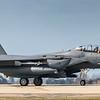 F15-E Strike Eagle - 48FW - 494FS - LN AF 01-2003 - RAF Lakenheath (March 2019)