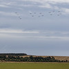 Tiger Moth - 100 Formation - Battle of Britain Airshow - IWM Duxford (September 2018)