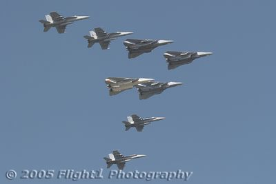 The 2005 Fleet-Fly-By consisted of four F-14 Tomcats (lead), two F/A-18C Hornets (left wing), and two F/A-18F Super Hornets (right wing)
