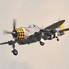 """P-47 Thunderbolt<br /> """"Jacky's Revenge"""""""