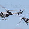 The Royal Australian Navy's Dancing Squirrels aerobatics team and their AS350 Ecureuil (Squirrel) helicopters are always an attraction at any major Australian Airshow.