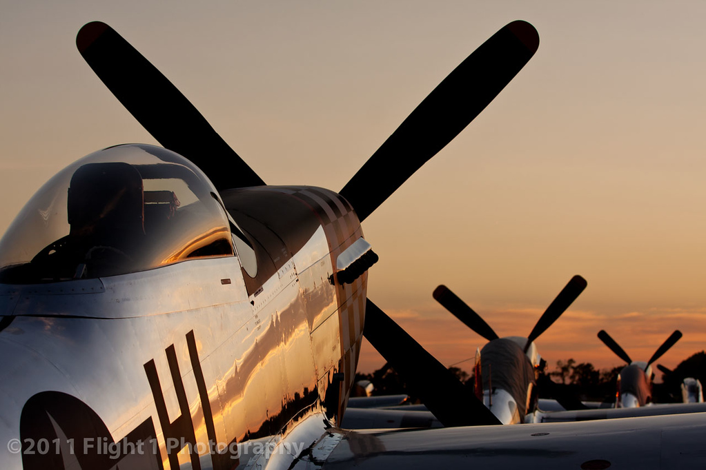 Mustangs at Sunset in Oshkosh