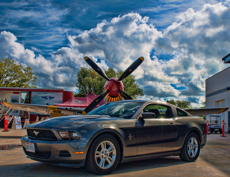 Mustang_2.jpg