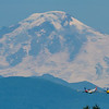 P-51 Mustangs in front of Mt. Baker