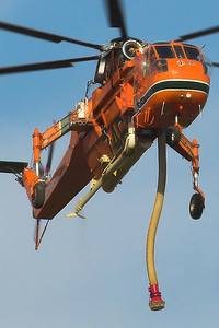 Erickson Aircrane hovering above Asquith golf course, about to take on another tank of water, whilst fighting fires in Ku-ring-gai National Park to the north of Sydney in 2007