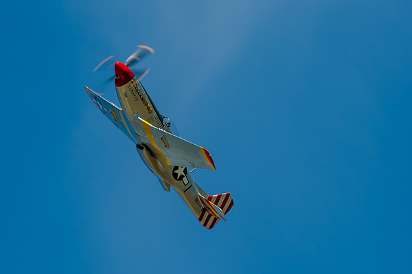 """The Bremont Horsemen"" WWII P-51 Mustang Aerobatic Team perform at the Abbotsford Airshow on Saturday, 9th August, 2014. Photo by: Stephen Hindley©"