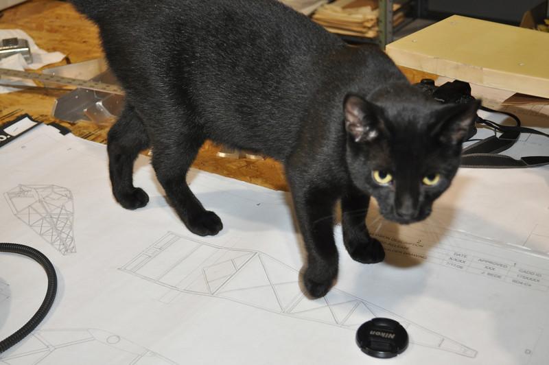 Jack explains the plans to me.