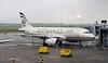 Etihad Airways Airbus A319 A6-EID, Nikola Tesla airport, Belgrade, Tues 17 June 2014 1