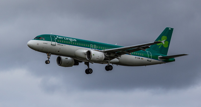 Aer Lingus - Airbus A320-214 (EI-GAM) - Heathrow Airport (March 2019)