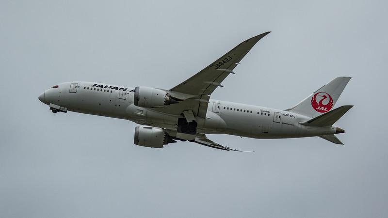 Japan Airlines - Boeing 787-8 Dreamliner (JA842J) - Heathrow Airport (March 2020)