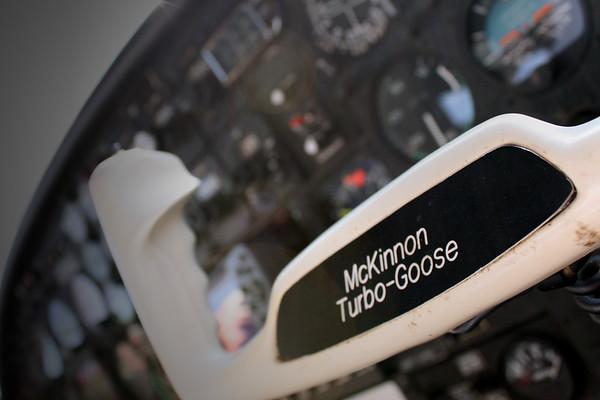 Turbo Goose