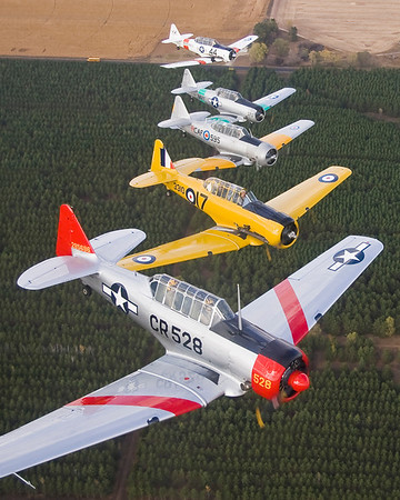 A formation of five beautiful T-6 / Harvard / SNJ aircraft over the Minnesota countryside south of the Twin Cities.