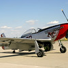 """ Red Dog XII ""    <br /> P-51 Mustang 44-72907 	Type: 	P-51D-25NA<br /> Serial #: 	44-72907<br /> Registry: 	N334FS<br /> Owner: 	Duane Doyle<br /> Base: 	Livermore, CA<br /> Status: 	Flying"