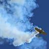 The Tumbling Bear<br /> 2011 Jacqueline Cochran Air Show