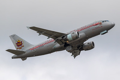 Air Canada A319-100 (C-FZUH)