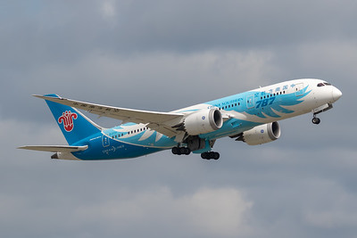 China Southern Airlines B787-8 (B-2733)