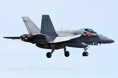 A Finnish Air Force F-18C from HävLLv31 (HN-450; cn1480/FNC050), photographed during recovery to Leeuwarden Air Base (FF-2015).