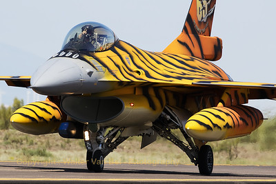 The Tiger from 31 Sqn at Kleine Brogel, a Belgian Air Force F-16AM (FA-77; cn6H77), shows her amazing new c/s while taxiing back to the ramp of Zaragoza Air Base after another mission during the Nato Tiger Meet 2016.