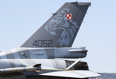 Tail close-up of a Polish Air Force F-16CJ (4052; cnJC-13), adorned with a beautiful Tiger c/s.