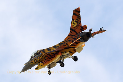 Belgian Air Force F-16AM (FA-77; cn6H77),  from 31 Sqn at Kleine Brogel, seen here turning final for RWY30 at Zaragoza AB, while showing the special c/s for the Nato Tiger Meet 2016.