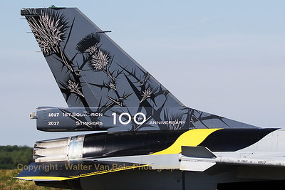 "Tail close-up of the Belgian Air Force F-16AM (FA-132; cn6H132), wearing the special c/s to mark the 100th anniversary of 1st Sqn ""Stingers""."