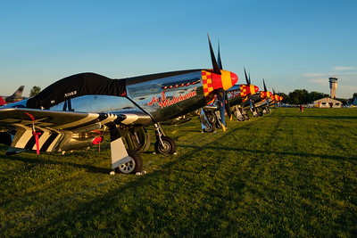 P-51 Line at Sunset