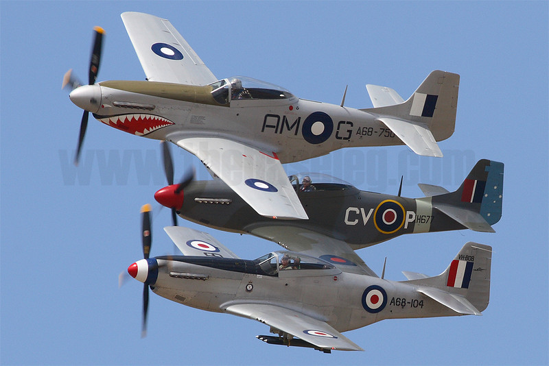 Three of Australia's flyable CAC Mustangs in a formation flypast at the 2008 Point Cook Air Pageant, from front to back; VH-SVU, VH-BOB and VH-JUC.