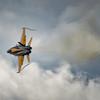 CF-18 Hornet Turn and Burn