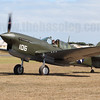 VH-HWK, the world's only flyable P-40F Warhawk