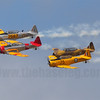 The Southern Knights and their Texans/Harvards/SNJs